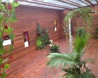 Kool Kids Isle Of Capri Zen Room